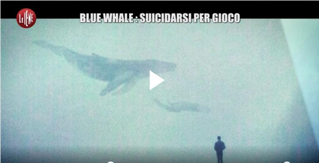 blue-whale-le-iene-1